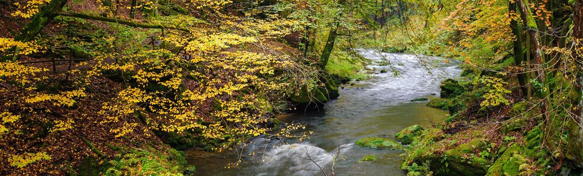 automne rivière datant qu'est-ce que MBM signifie datation