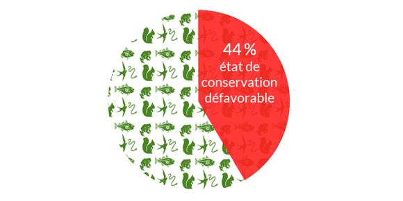 État-de-conservation-des-espèces-en-Bretagne.png