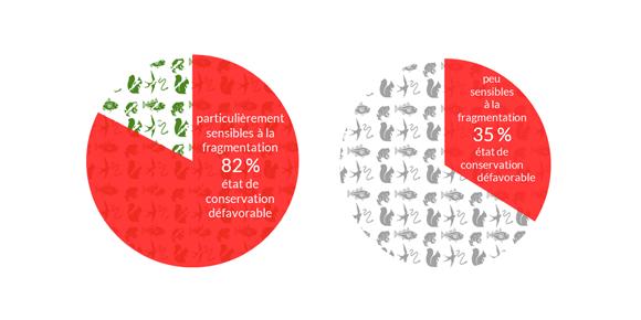 État-de-conservation-des-espèces-particulièrement-sensibles-à-la-fragmentation-des-milieux-naturels-en-Bretagne.png