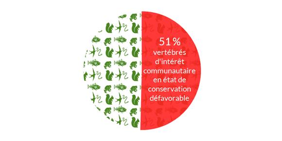 État-de-conservation-régional-des-espèces-citées-par-les-directives-européennes-«-Oiseaux-»-et-«-Habitats-»-en-Bretagne.png