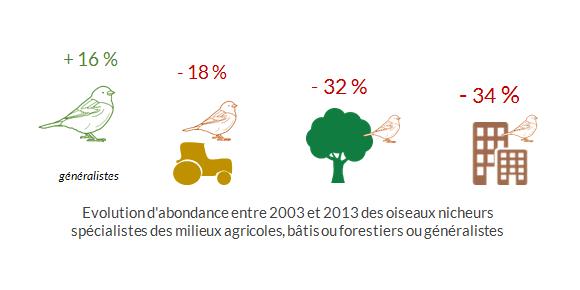 Évolution-d'abondance-des-oiseaux-spécialistes-d'un-milieu-commun-en-Bretagne.png