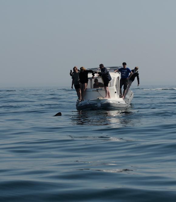A. Rohr (APECS) - Observation en mer