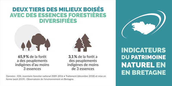 indicateur-diversite-des-essences-forestieres-bretagne-infographie