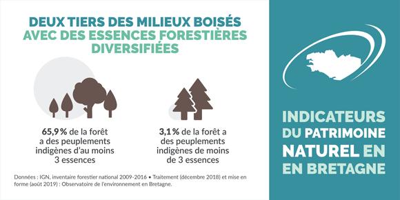 indicateur-diversite-des-essences-forestieres-bretagne-infographie