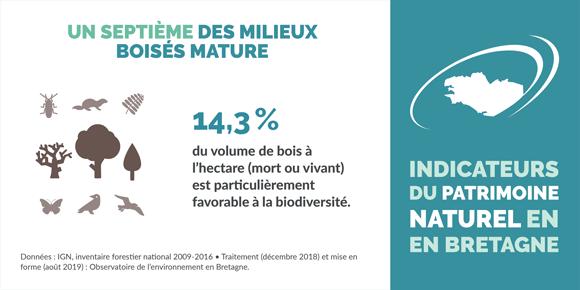 indicateur-maturite-milieux-boises-bretagne-infographie