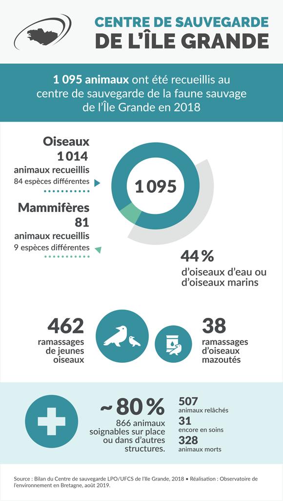 centre-sauvegarde-faune-sauvage-infographie