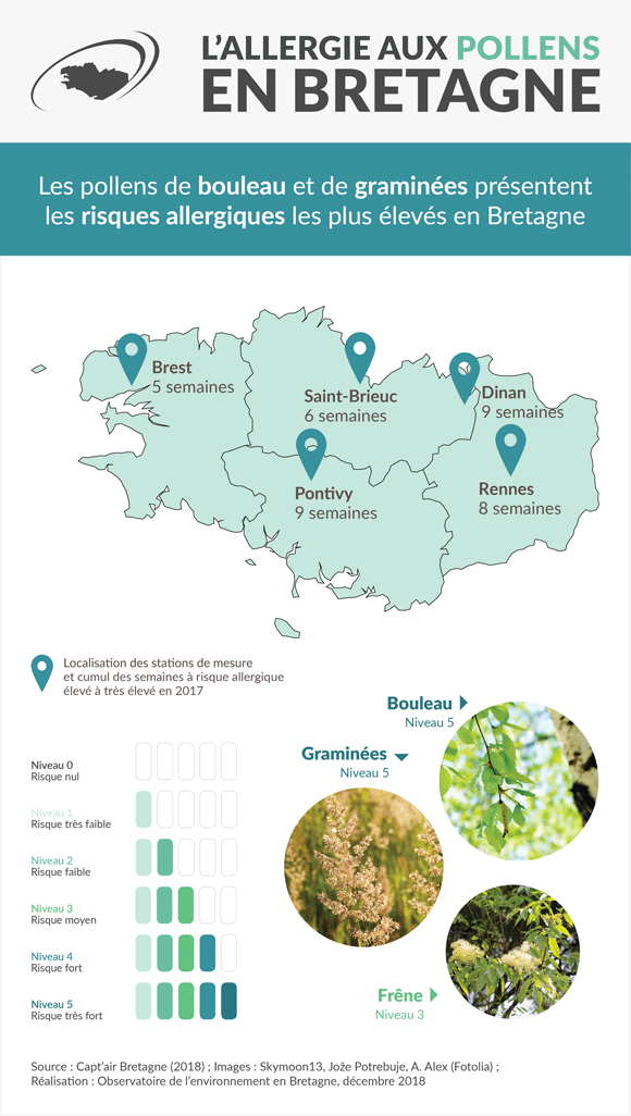 allergie-pollens-bretagne-infographie