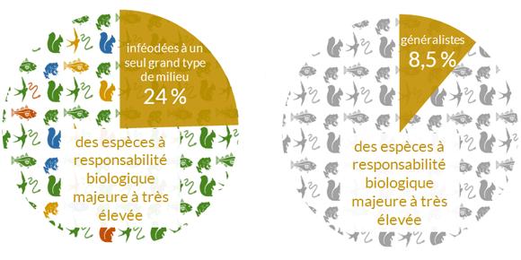 Responsabilité-biologique-de-la-Bretagne-pour-les-espèces-inféodées-à-un-seul-grand-type-de-milieux.png