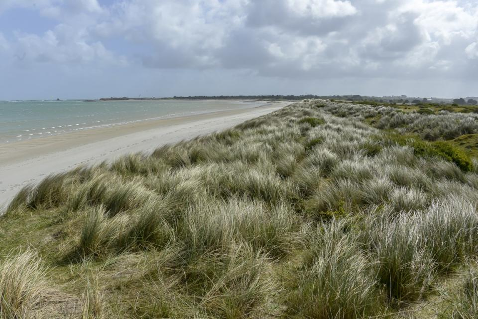 dune-keremma-treflez-finistere