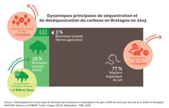 Dynamiques principales de séquestration et de déséquestration du carbone en Bretagne en 2015