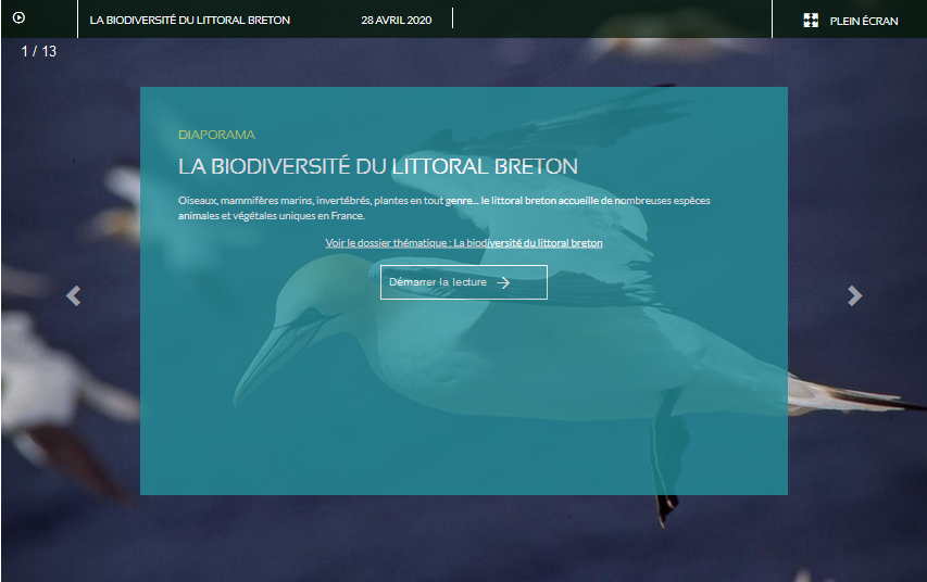 diaporama_biodiversite