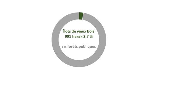 ilots_vieux_bois
