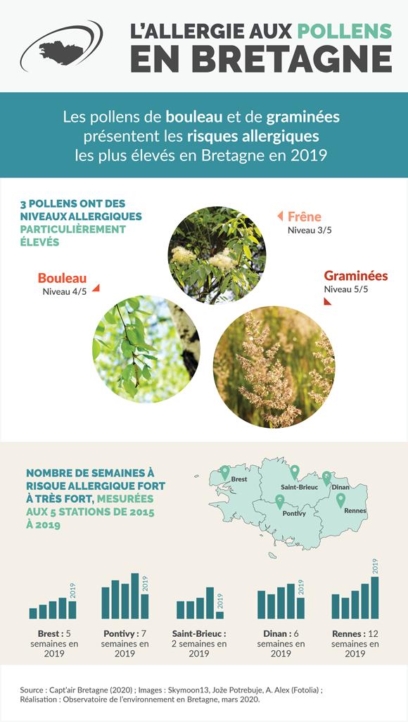 Allergies aux pollens en Bretagne - Infographie