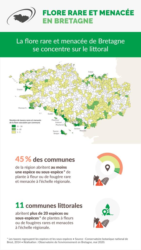 flore-littorale-rare-menacee-bretagne-infographie