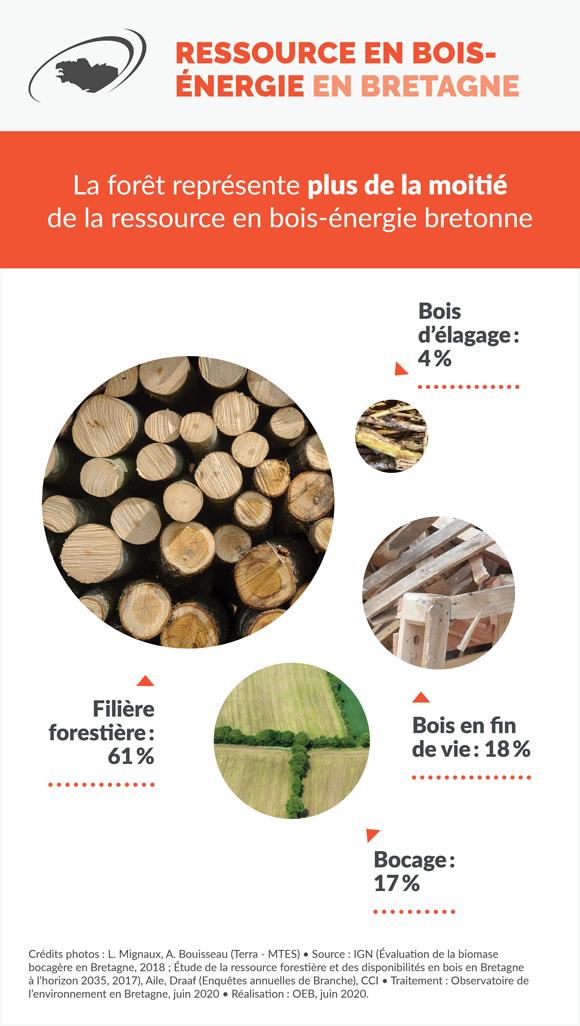 ressource-bois-energie-bretagne-infographie