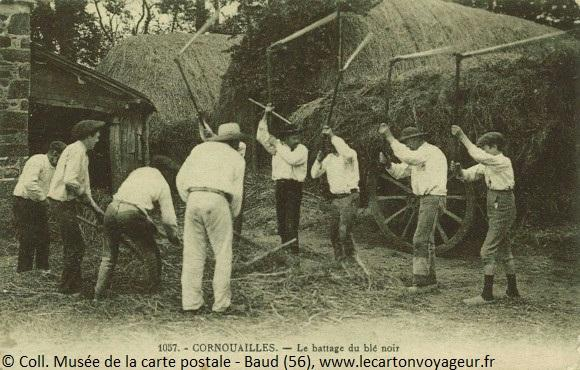 Carte postale ancienne  : scène de battage de blé noir