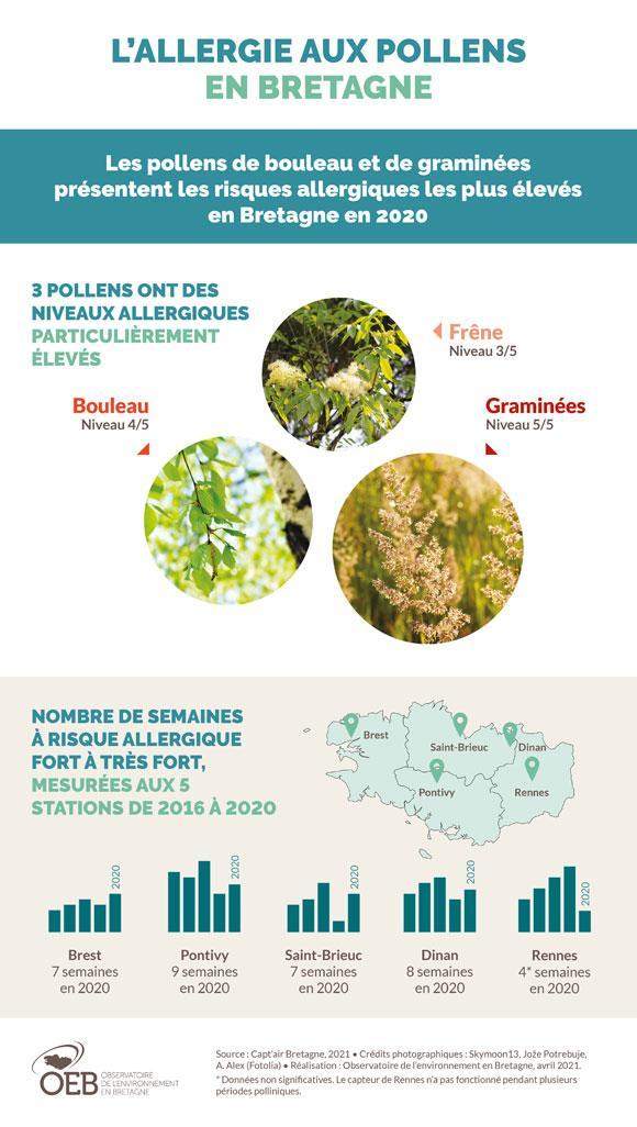 Infographie Risque pollinique 2020