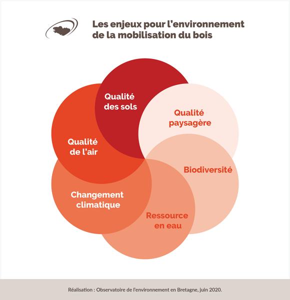 enjeux-environnementaux-mobilisation-bois